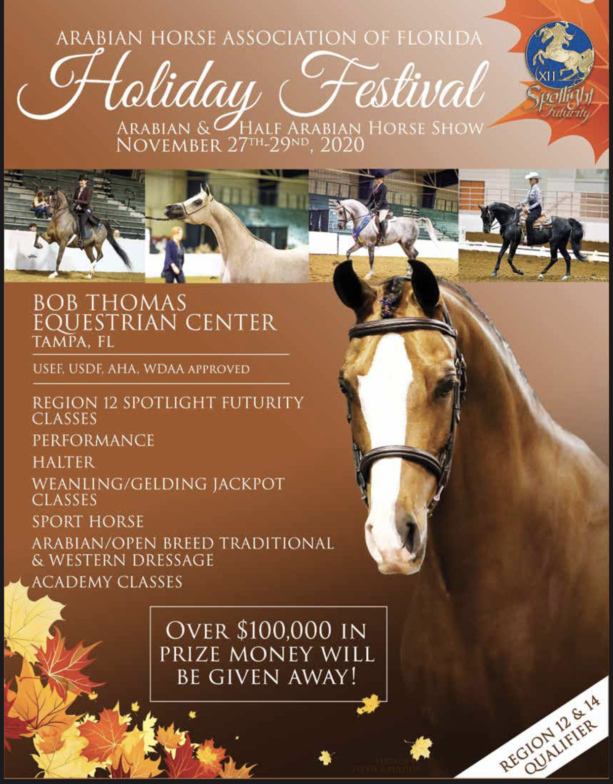 News Spotlight Futurity Program